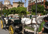 Horse drawn carriage in Valencia